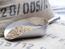 コーヒー豆の価格変更