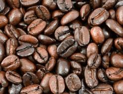 深煎りコーヒー豆の油